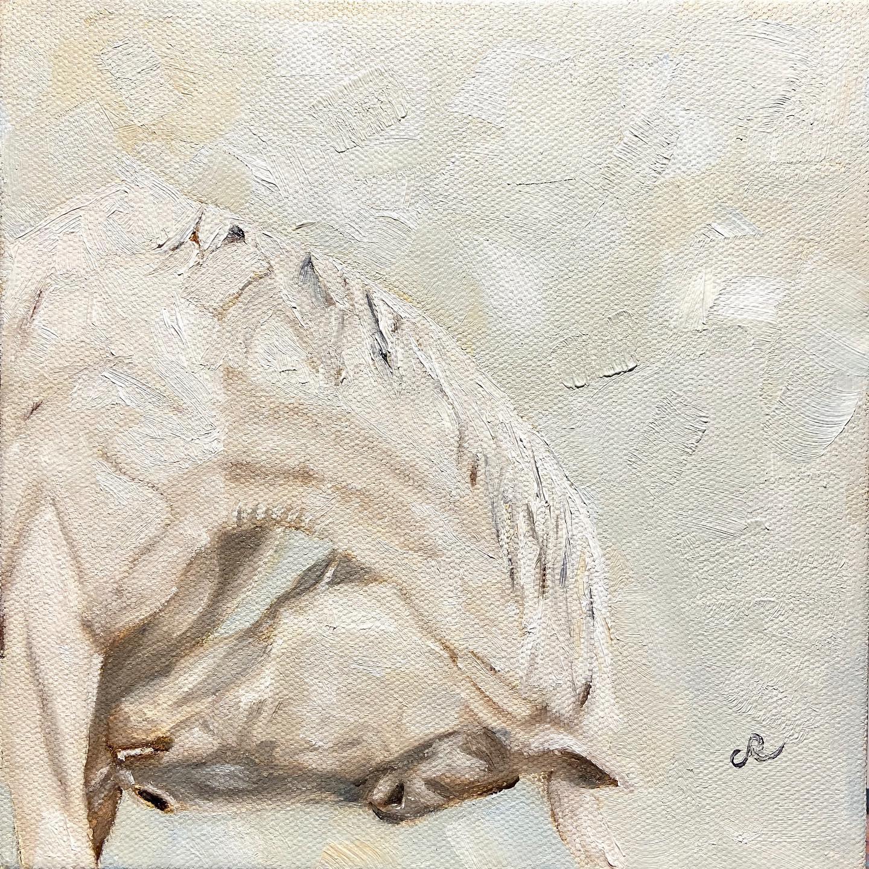 caballo de blanco
